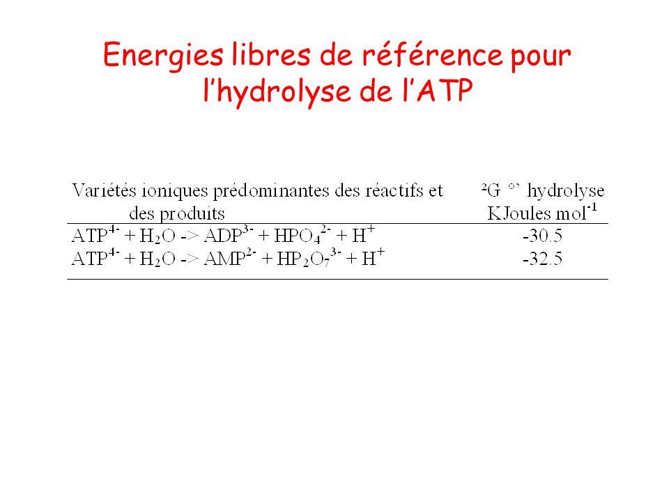 Energies libres de référence pour l'hydrolyse de l'ATP