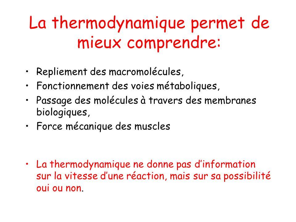 La thermodynamique permet de mieux comprendre: