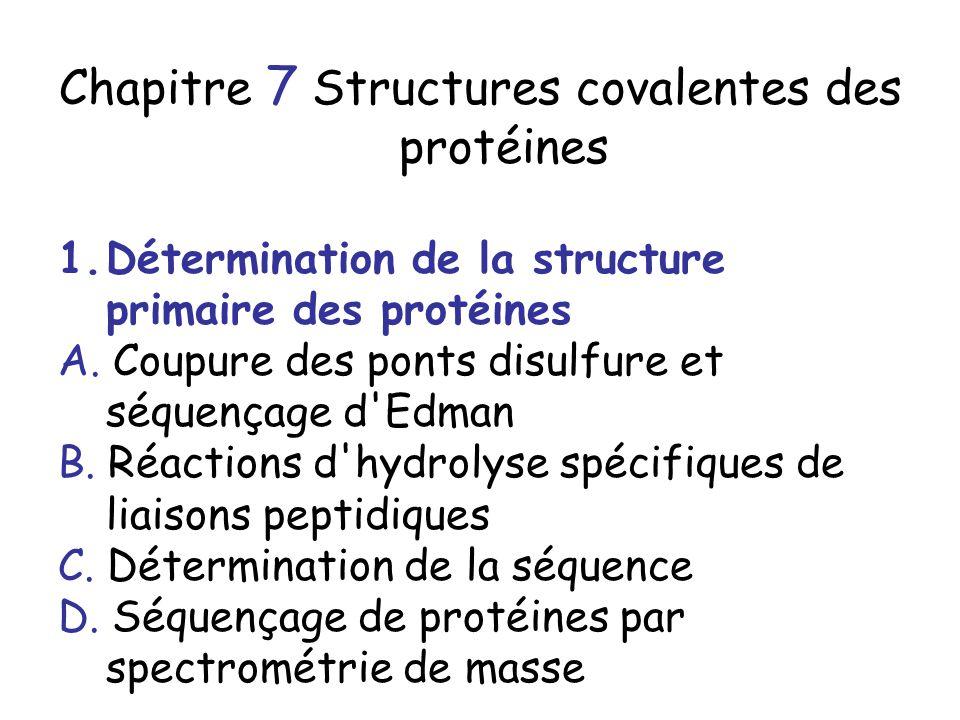 Chapitre 7 Structures covalentes des protéines
