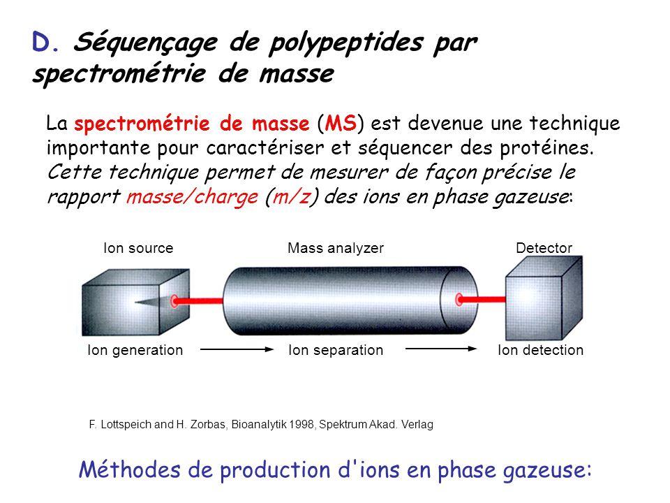 D. Séquençage de polypeptides par spectrométrie de masse