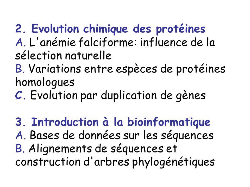 2. Evolution chimique des protéines