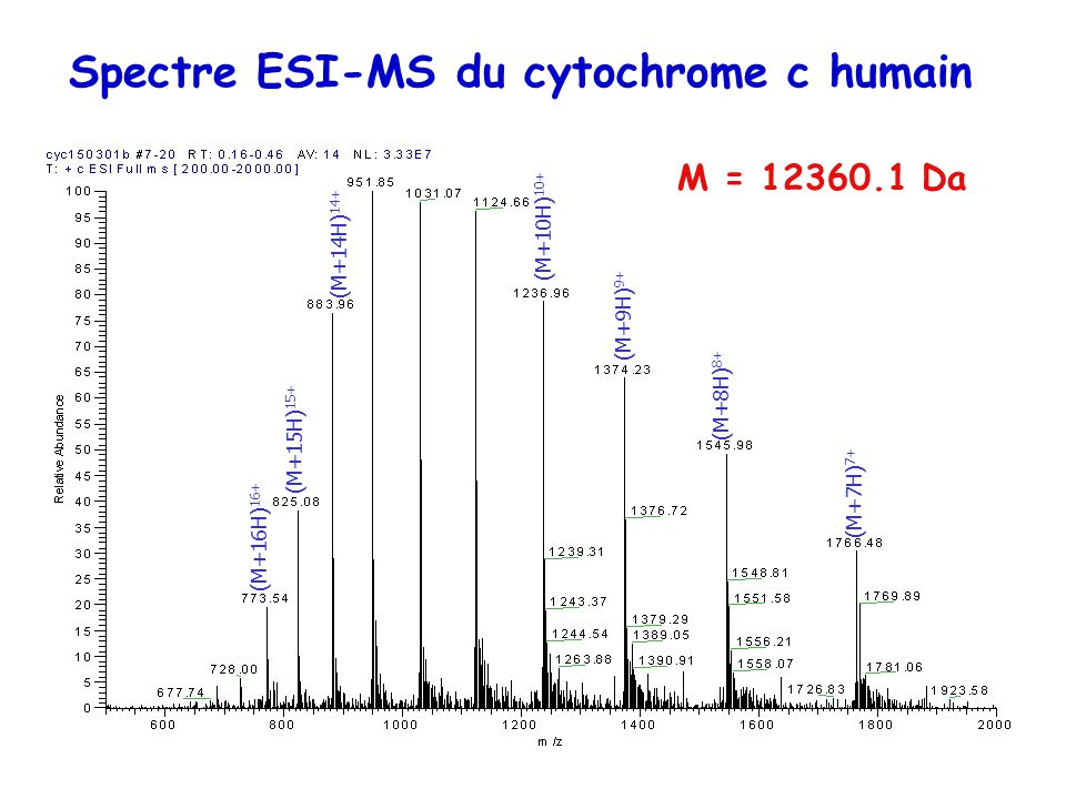 Spectre ESI-MS du cytochrome c humain