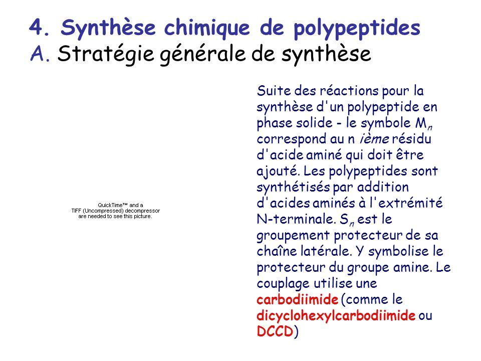 4. Synthèse chimique de polypeptides A. Stratégie générale de synthèse