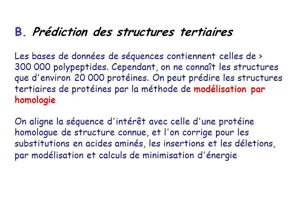 B. Prédiction des structures tertiaires