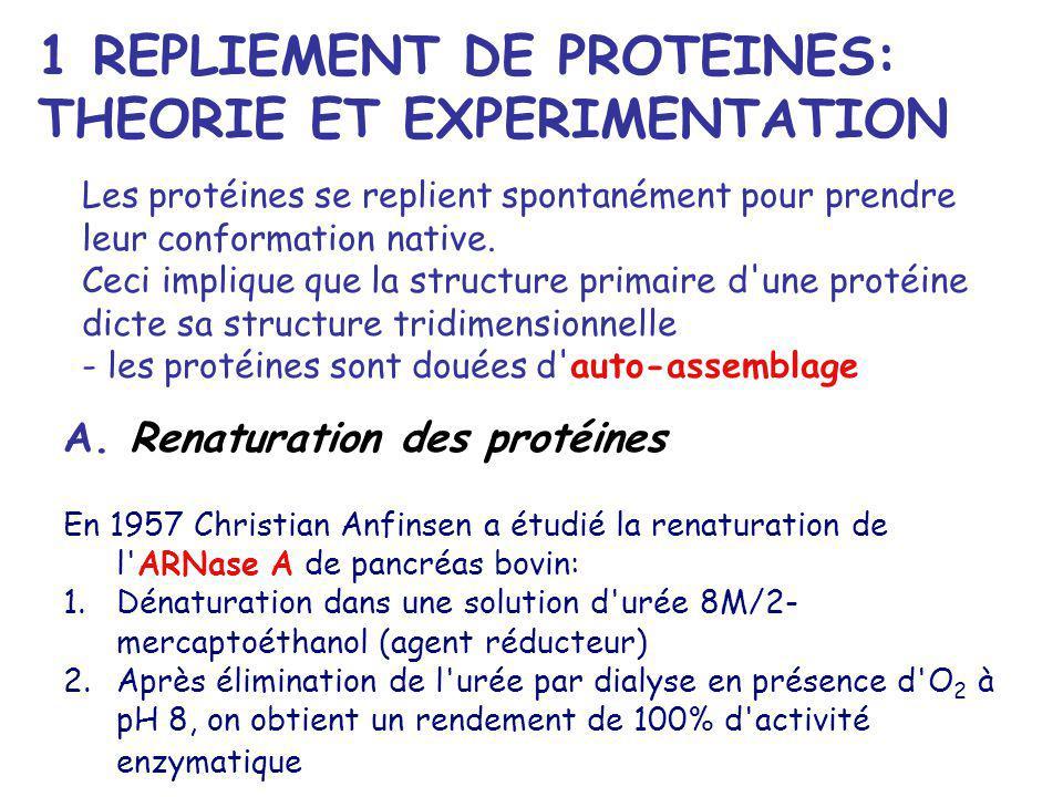 1 REPLIEMENT DE PROTEINES: THEORIE ET EXPERIMENTATION