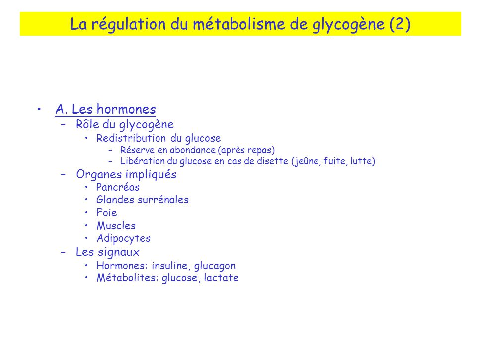 La régulation du métabolisme de glycogène (2)
