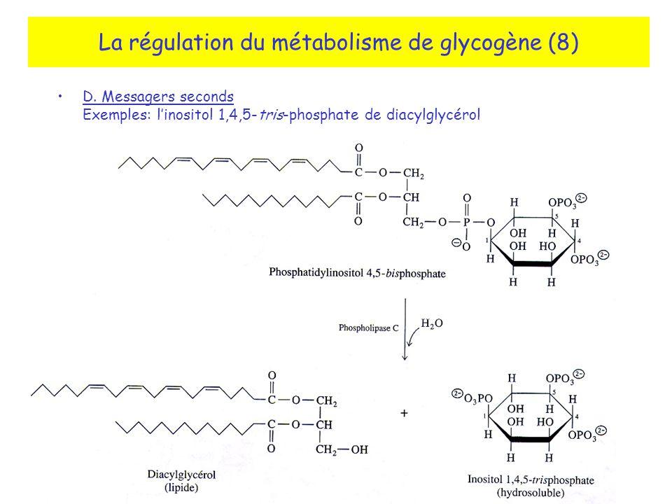 La régulation du métabolisme de glycogène (8)