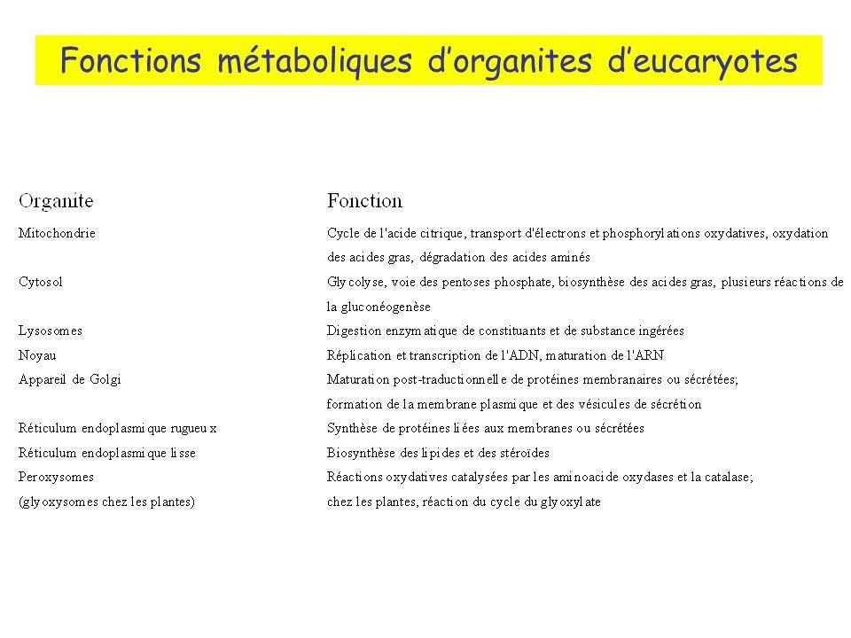 Fonctions métaboliques d'organites d'eucaryotes