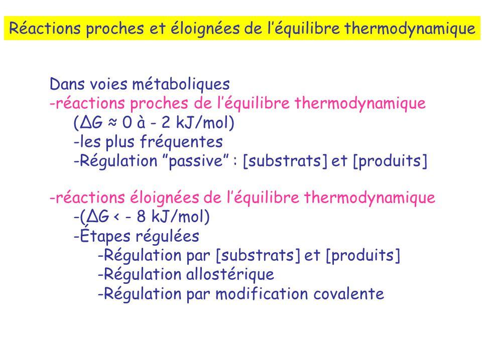Réactions proches et éloignées de l'équilibre thermodynamique