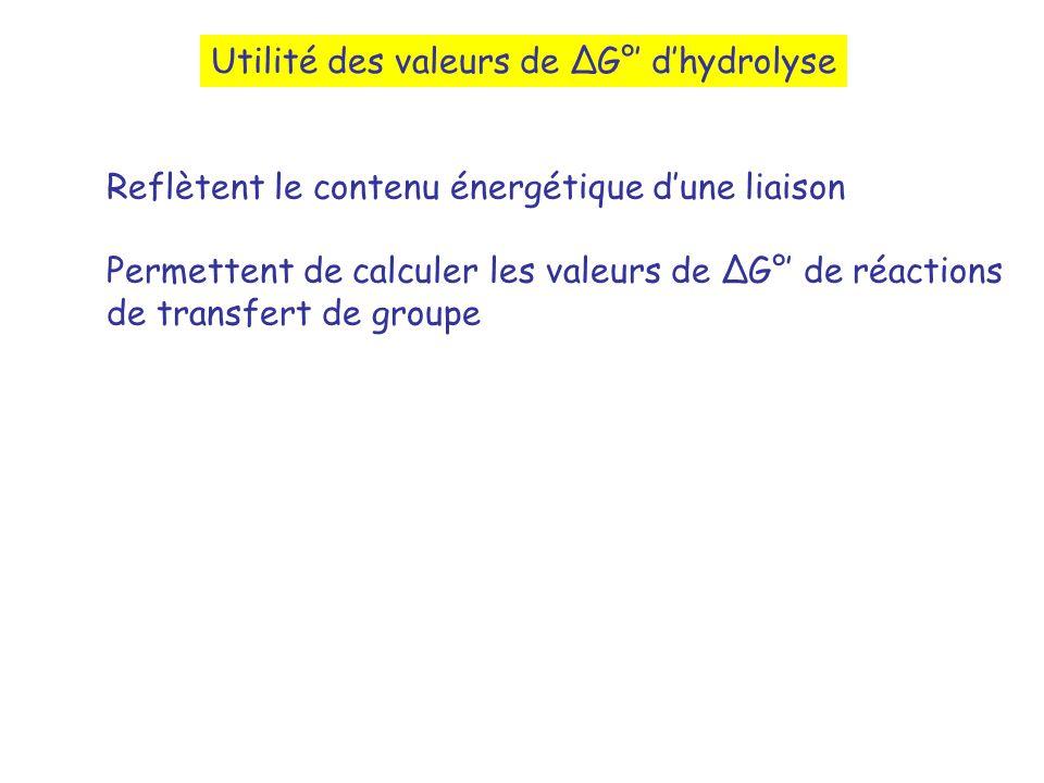Utilité des valeurs de ∆G°' d'hydrolyse