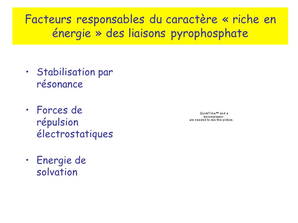 Facteurs responsables du caractère « riche en énergie » des liaisons pyrophosphate