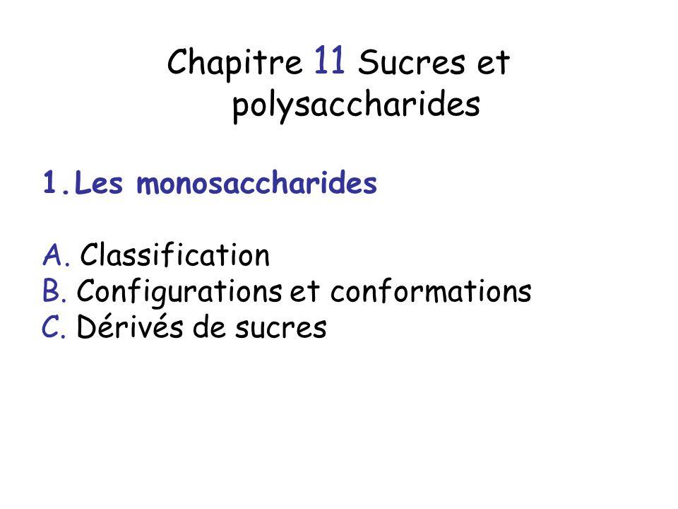 Chapitre 11 Sucres et polysaccharides