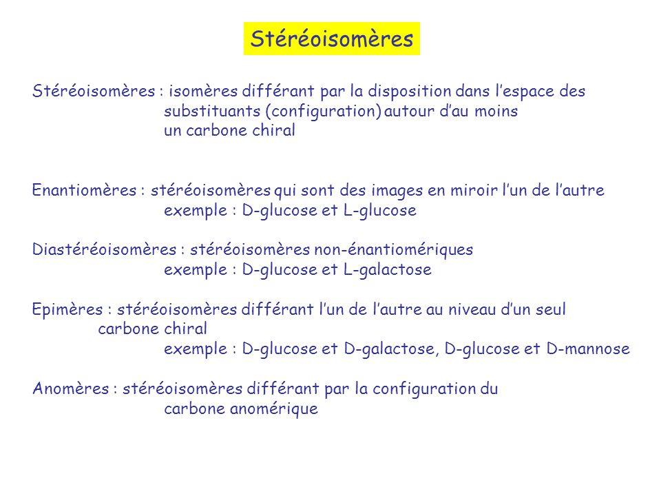 Stéréoisomères Stéréoisomères : isomères différant par la disposition dans l'espace des. substituants (configuration) autour d'au moins.