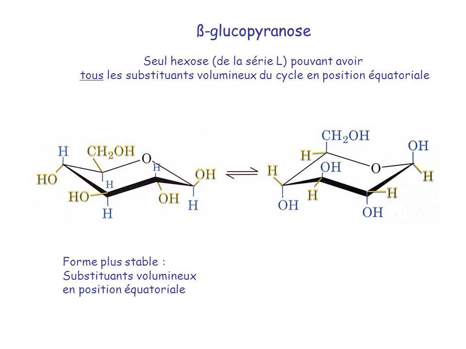 ß-glucopyranose Seul hexose (de la série L) pouvant avoir
