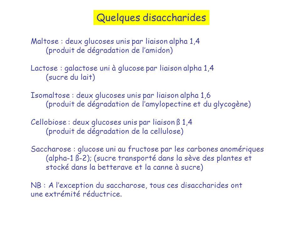 Quelques disaccharides