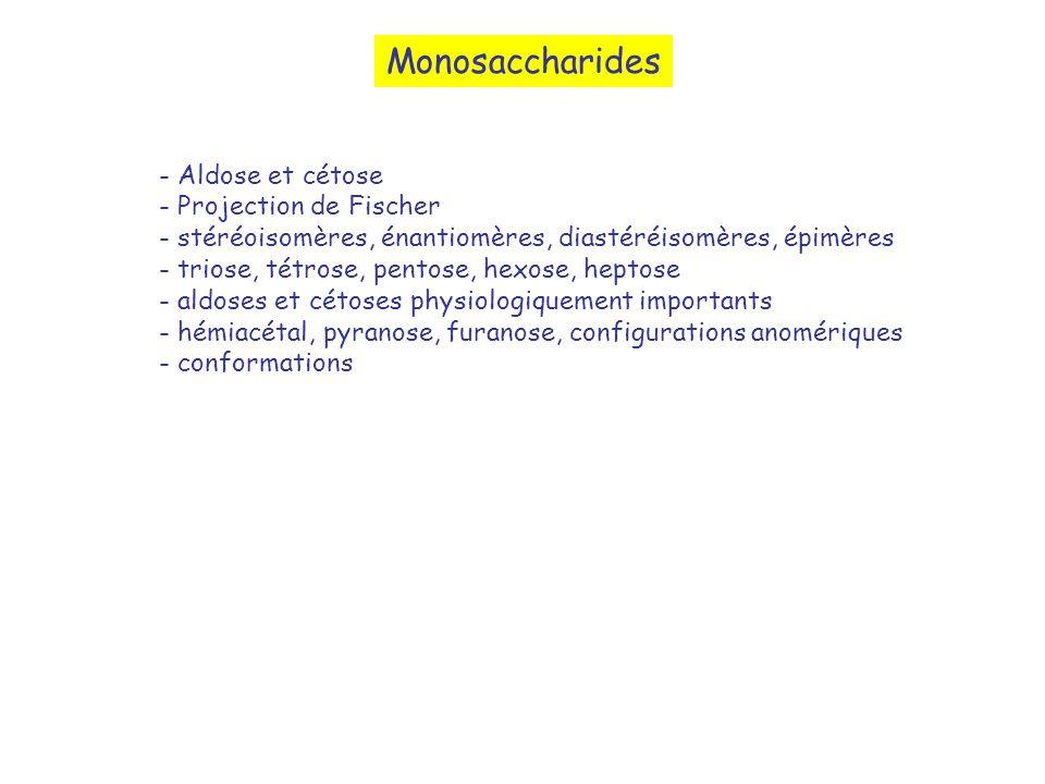 Monosaccharides - Aldose et cétose - Projection de Fischer