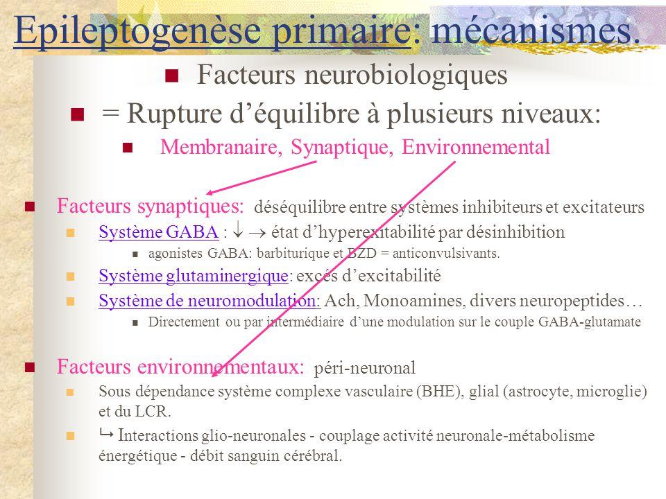 Epileptogenèse primaire: mécanismes.