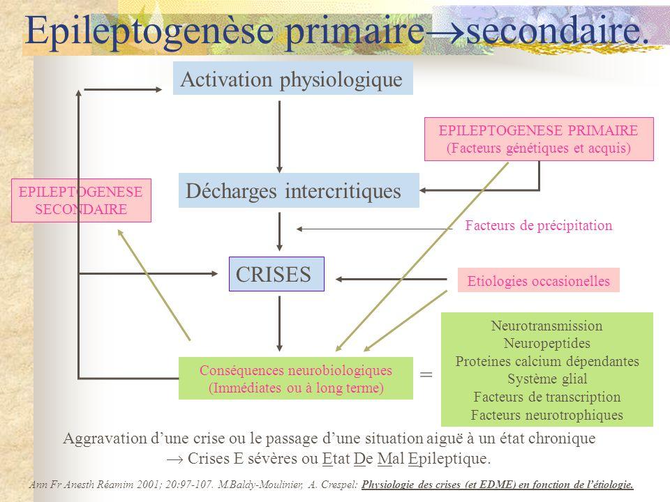 Epileptogenèse primairesecondaire.