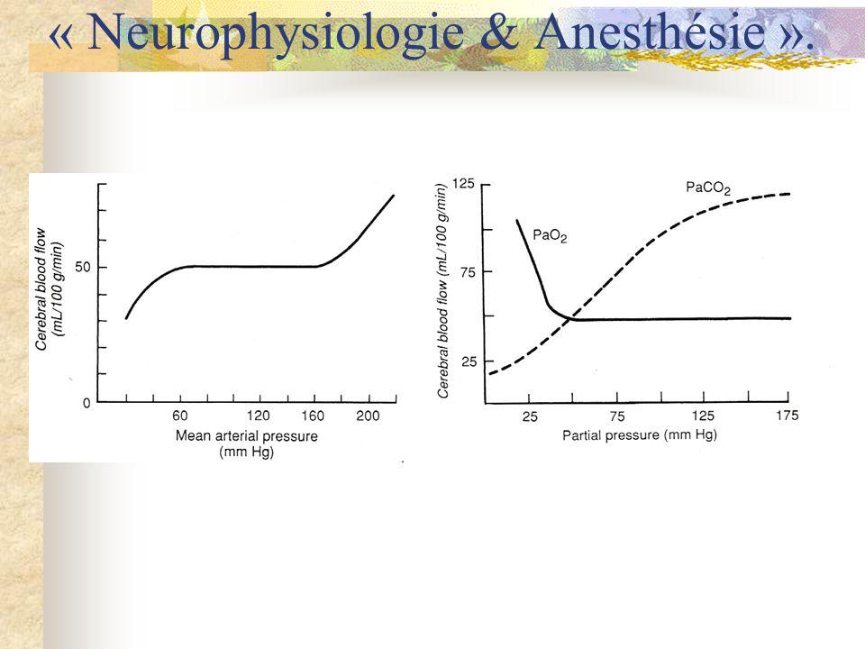 « Neurophysiologie & Anesthésie ».