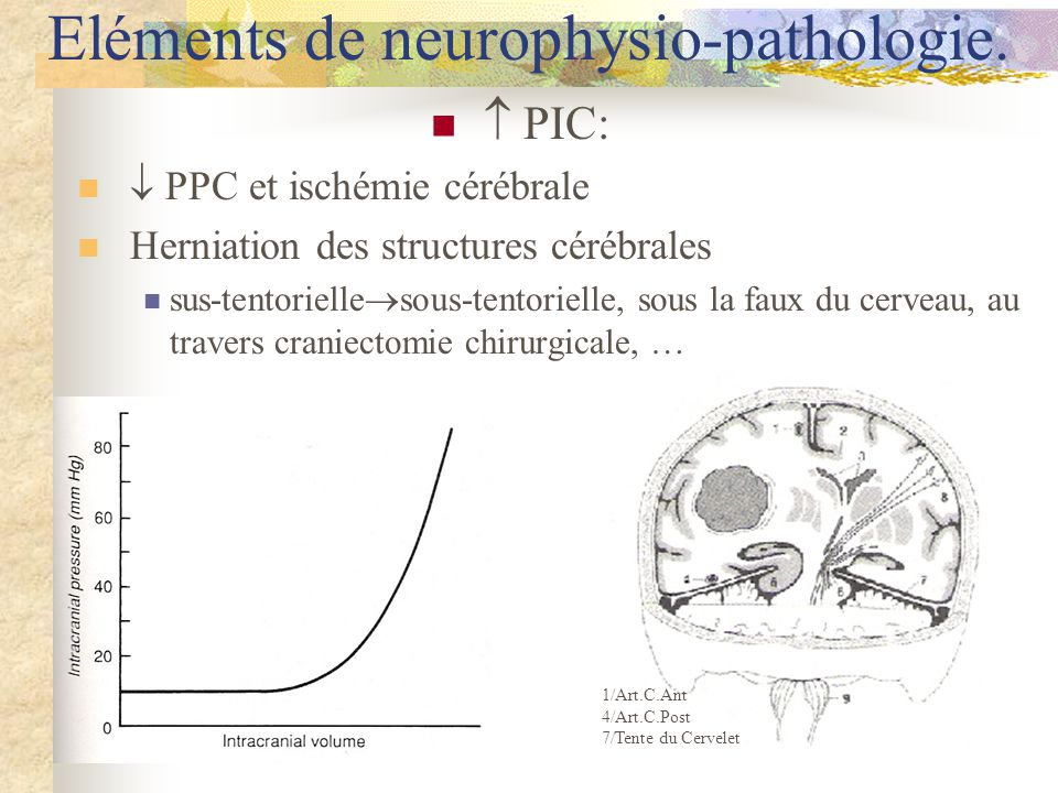Eléments de neurophysio-pathologie.