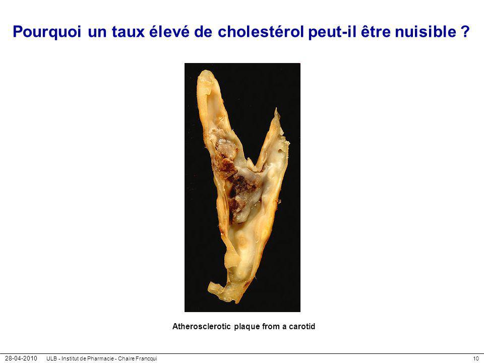 Pourquoi un taux élevé de cholestérol peut-il être nuisible