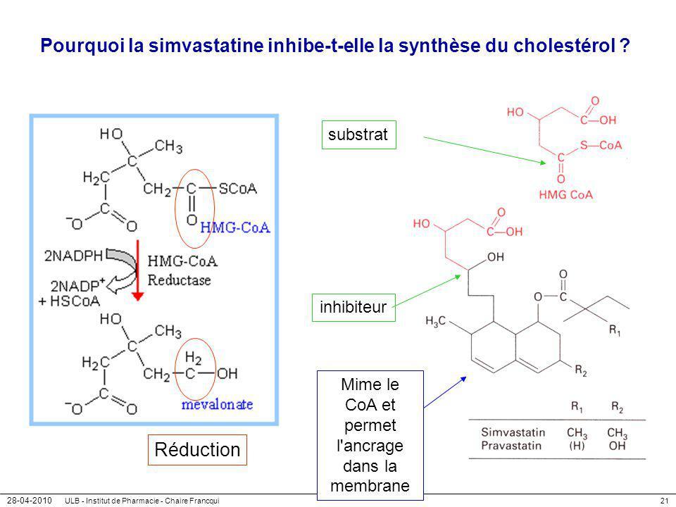 Pourquoi la simvastatine inhibe-t-elle la synthèse du cholestérol