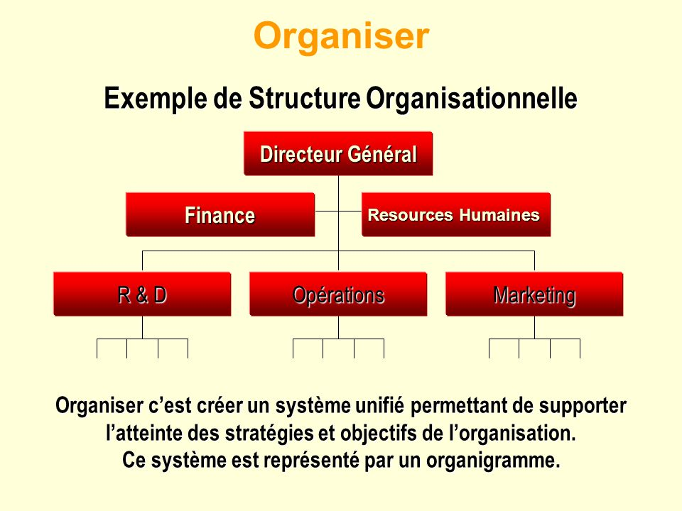 Exemple de Structure Organisationnelle