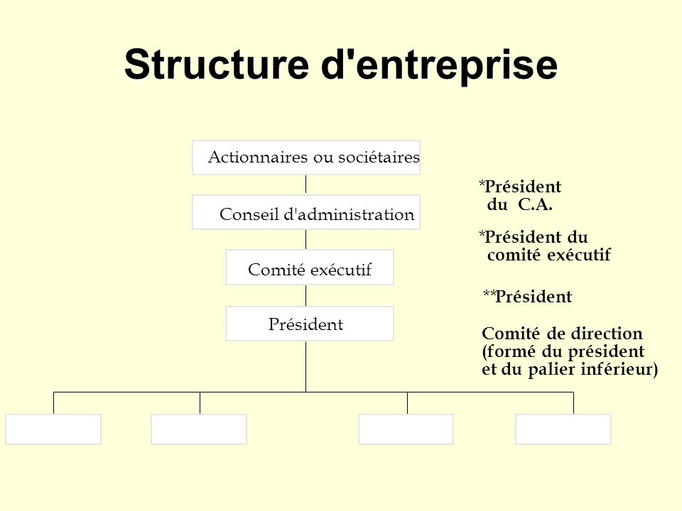 Structure d entreprise