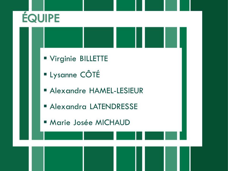 ÉQUIPE Virginie BILLETTE Lysanne CÔTÉ Alexandre HAMEL-LESIEUR