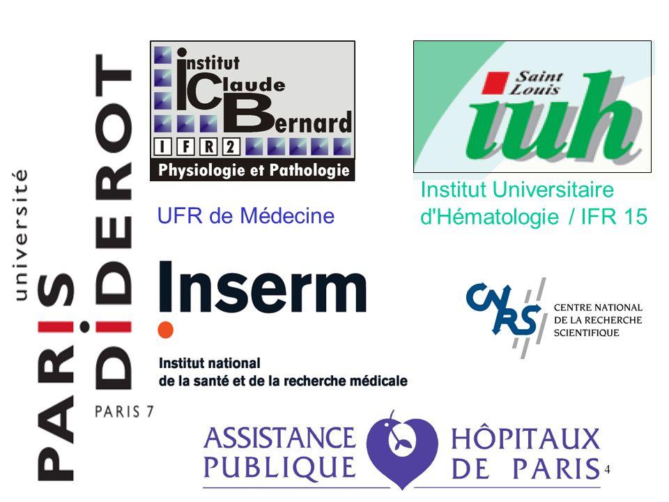 Institut Universitaire d Hématologie / IFR 15