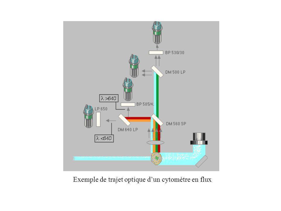 Exemple de trajet optique d'un cytomètre en flux