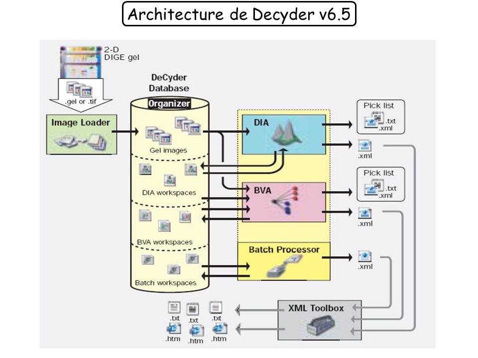 Architecture de Decyder v6.5