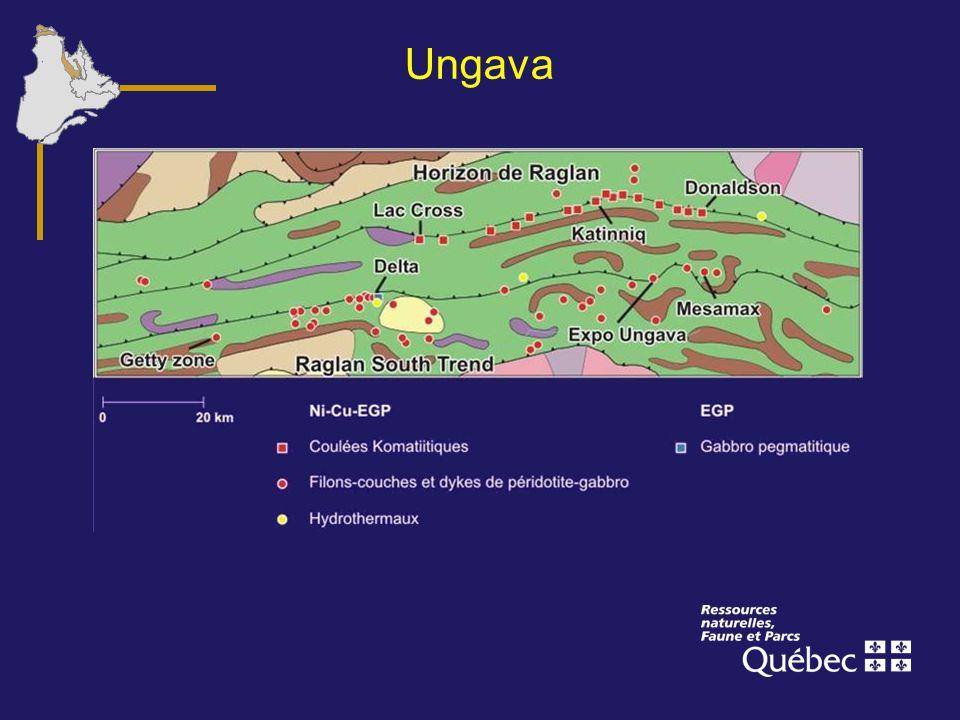 Ungava Cette image donne une idée du nombre et de la distribution des gîtes de Ni-Cu-EGP dans la partie centre-est de la ceinture.