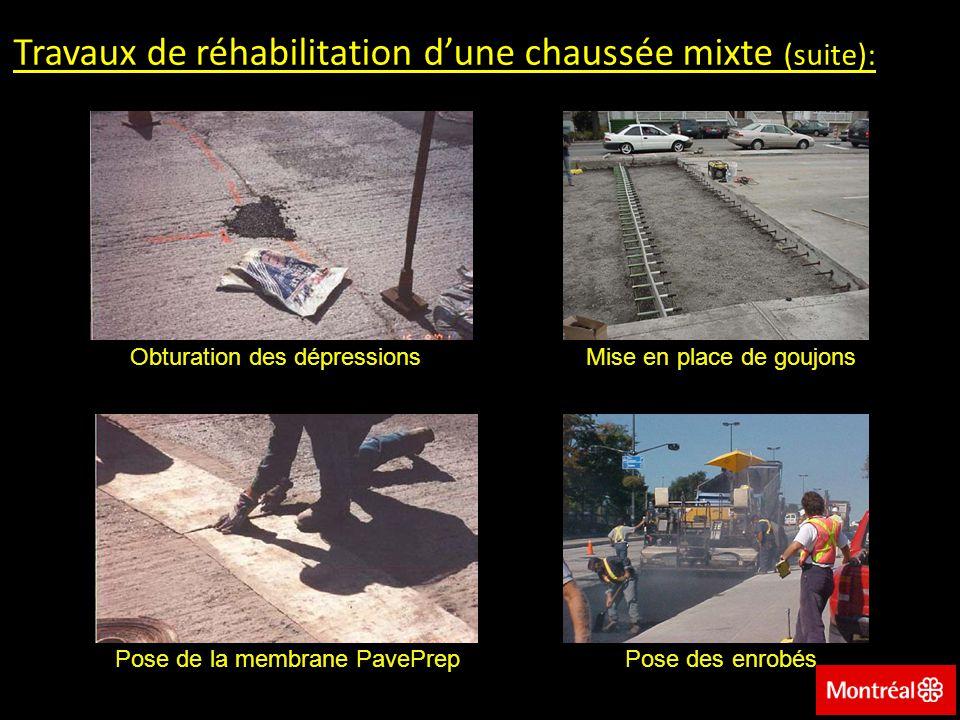 Travaux de réhabilitation d'une chaussée mixte (suite):