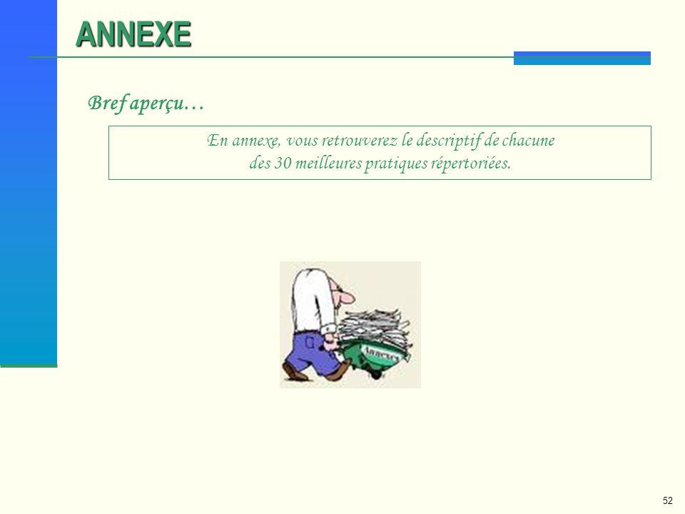 ANNEXE Bref aperçu… En annexe, vous retrouverez le descriptif de chacune des 30 meilleures pratiques répertoriées.
