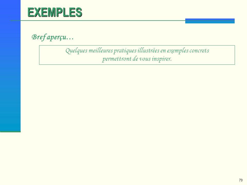 EXEMPLES Bref aperçu… Quelques meilleures pratiques illustrées en exemples concrets permettront de vous inspirer.