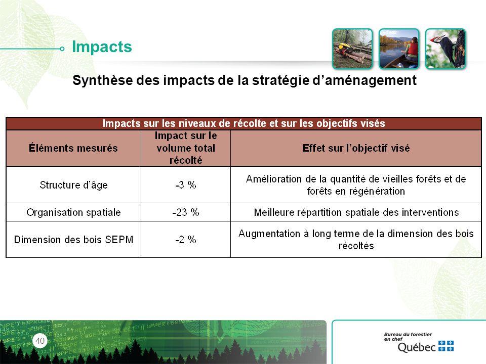 Synthèse des impacts de la stratégie d'aménagement