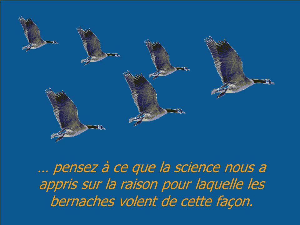 … pensez à ce que la science nous a appris sur la raison pour laquelle les bernaches volent de cette façon.