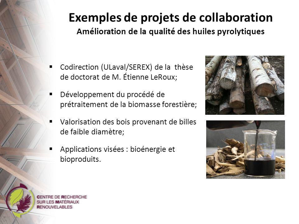 Exemples de projets de collaboration