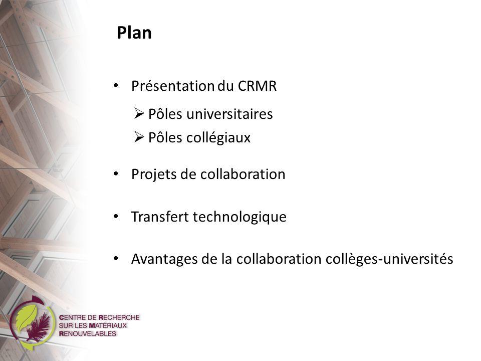Plan Présentation du CRMR Pôles universitaires Pôles collégiaux