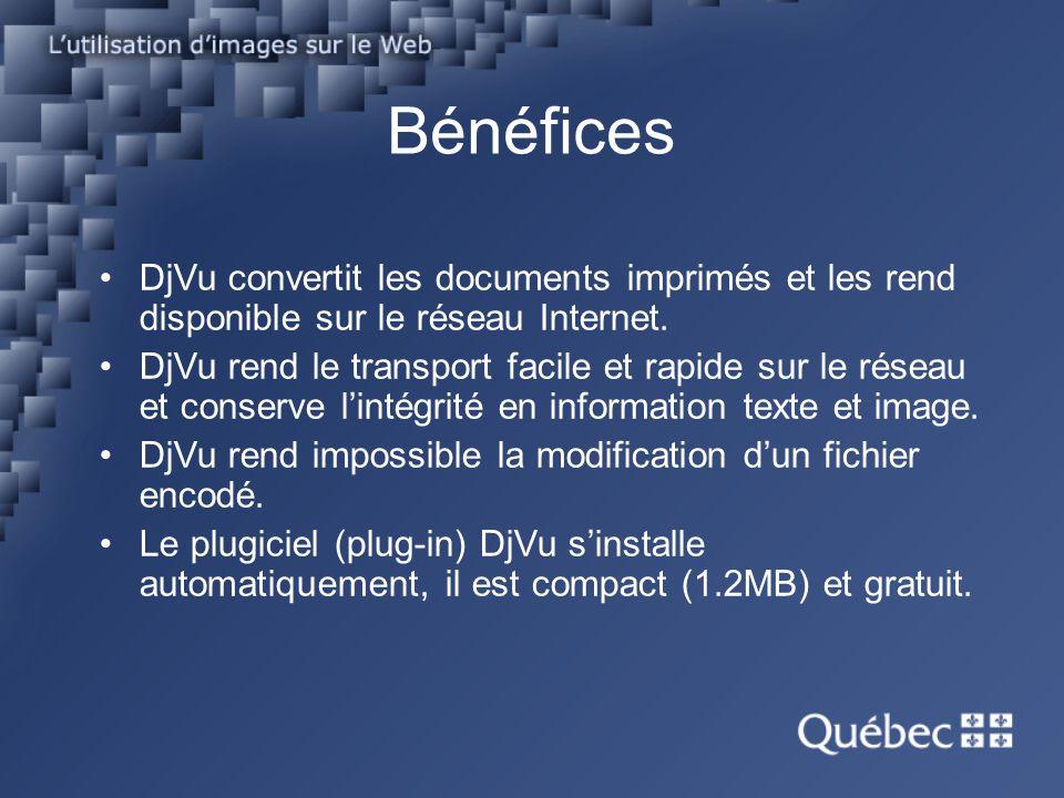 Bénéfices DjVu convertit les documents imprimés et les rend disponible sur le réseau Internet.