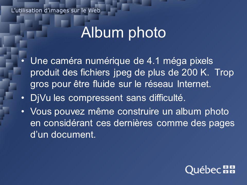 Album photo Une caméra numérique de 4.1 méga pixels produit des fichiers jpeg de plus de 200 K. Trop gros pour être fluide sur le réseau Internet.