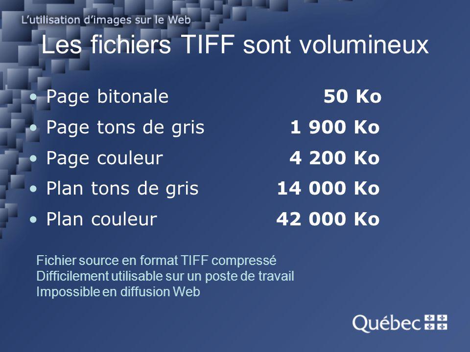 Les fichiers TIFF sont volumineux