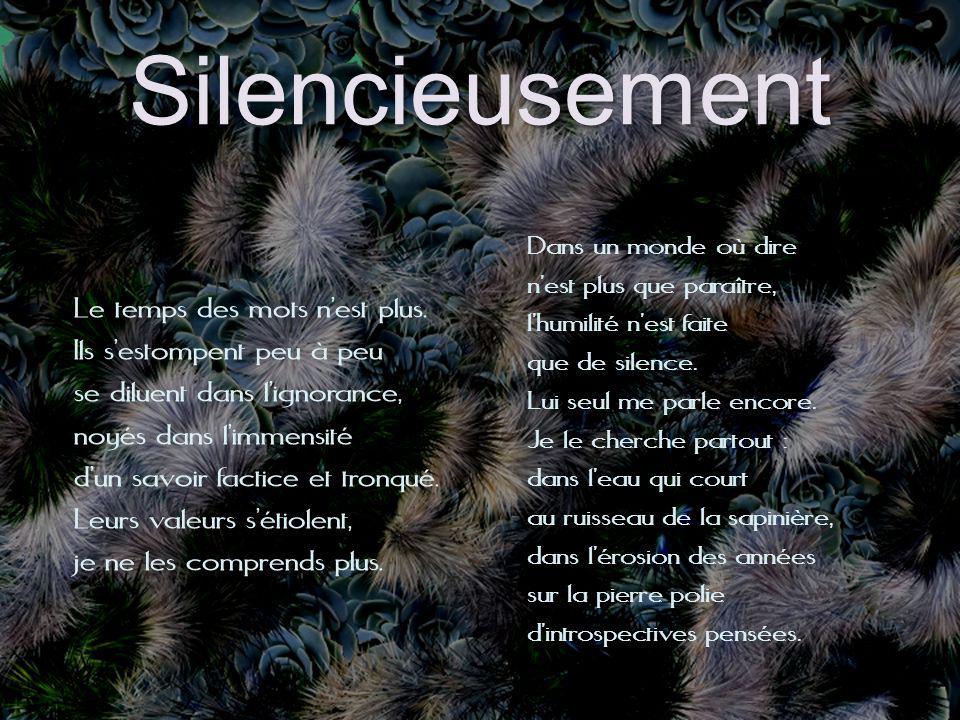 Silencieusement Dans un monde où dire. n'est plus que paraître, l'humilité n'est faite. que de silence.