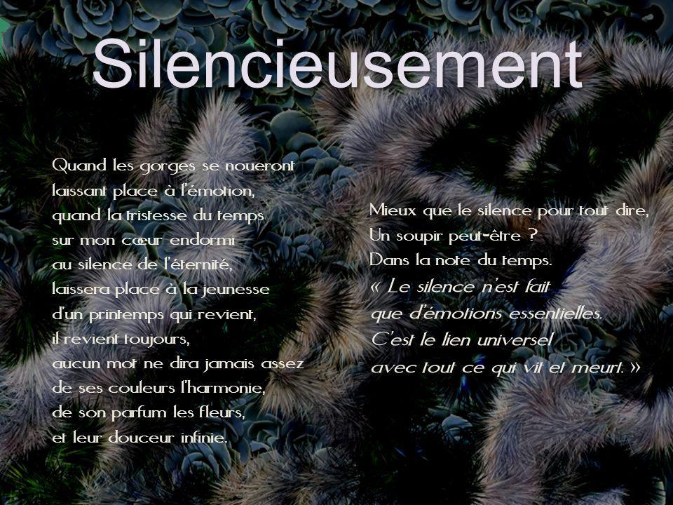 Silencieusement « Le silence n'est fait que d'émotions essentielles.