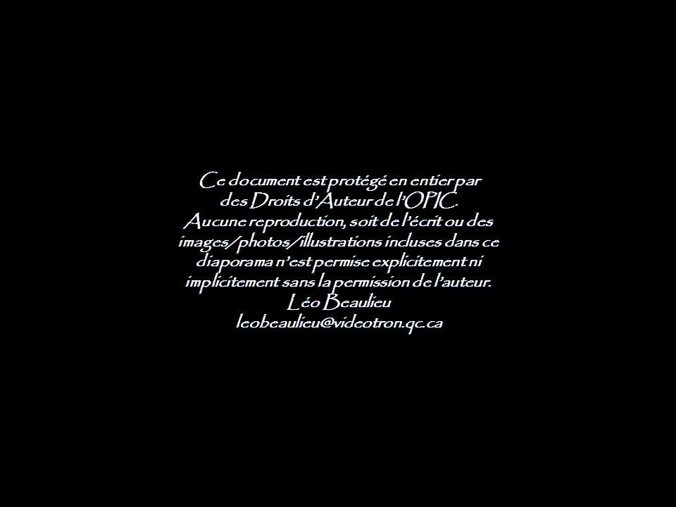 Ce document est protégé en entier par des Droits d'Auteur de l'OPIC.