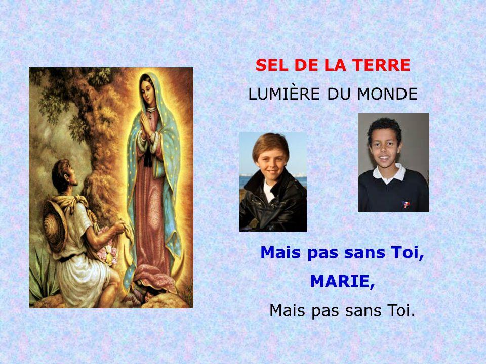 . . SEL DE LA TERRE LUMIÈRE DU MONDE Mais pas sans Toi, MARIE,