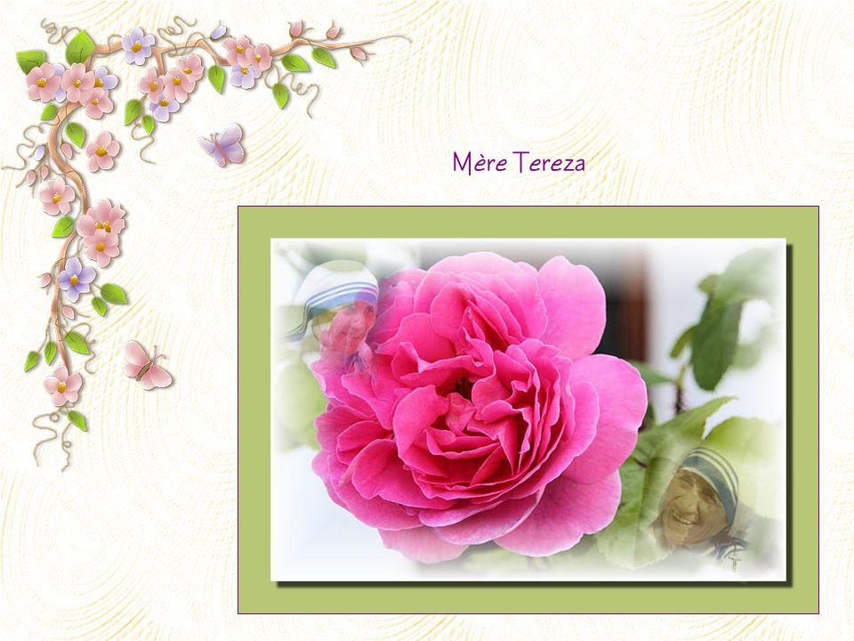 Mère Tereza