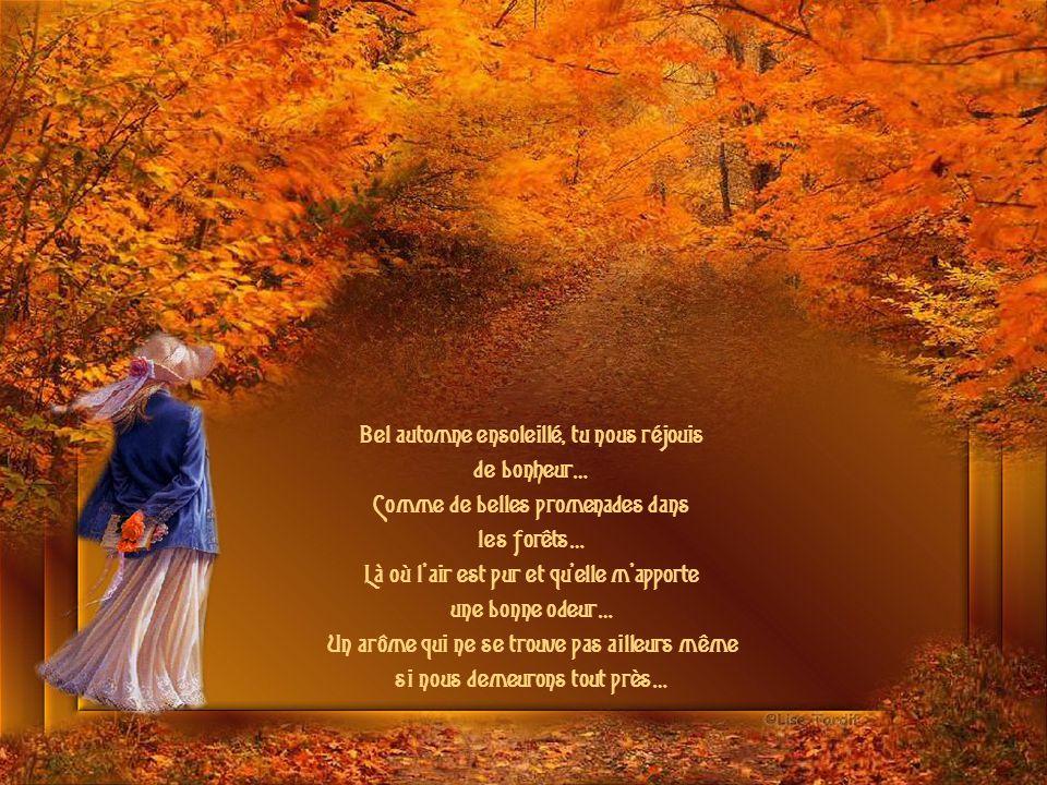 Bel automne ensoleillé, tu nous réjouis de bonheur…