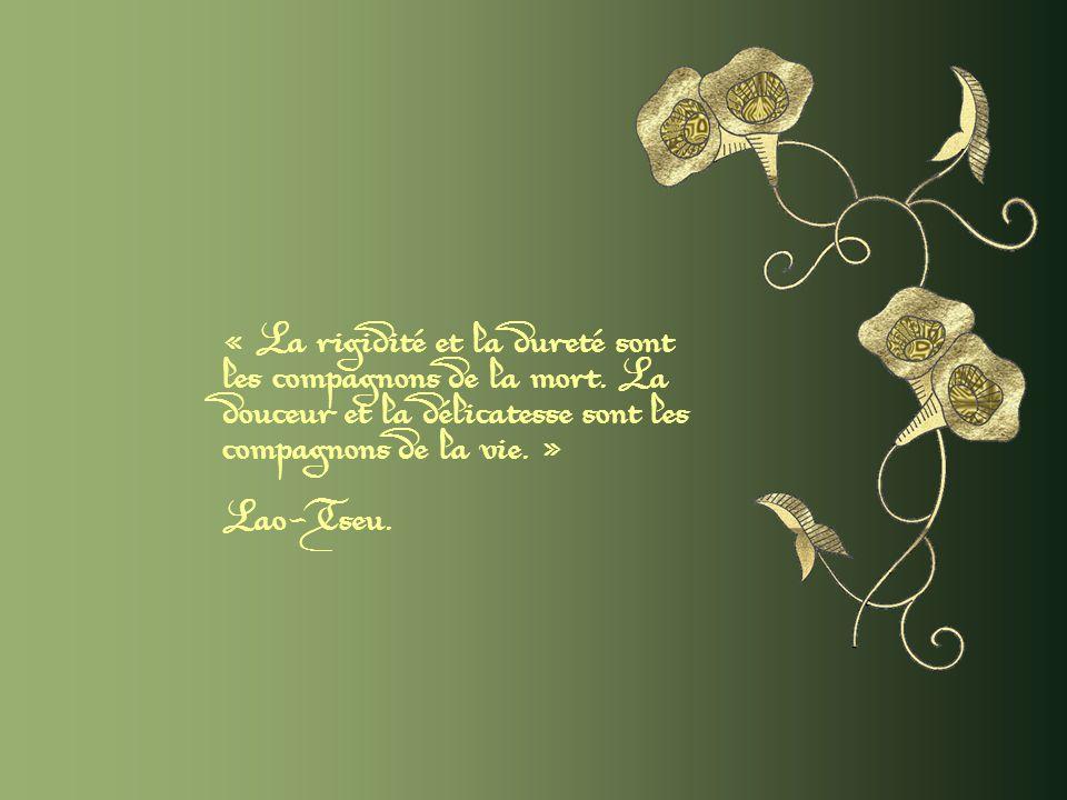 « La rigidité et la dureté sont les compagnons de la mort